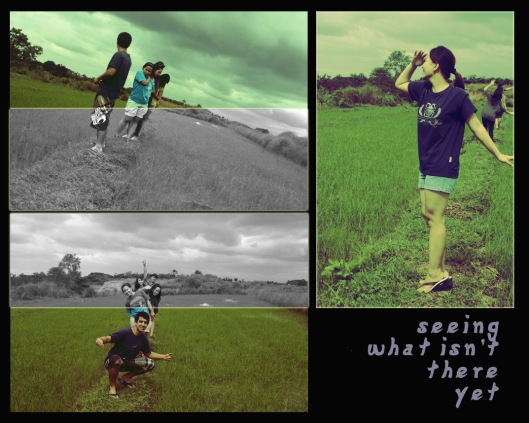 seeing what isn't there